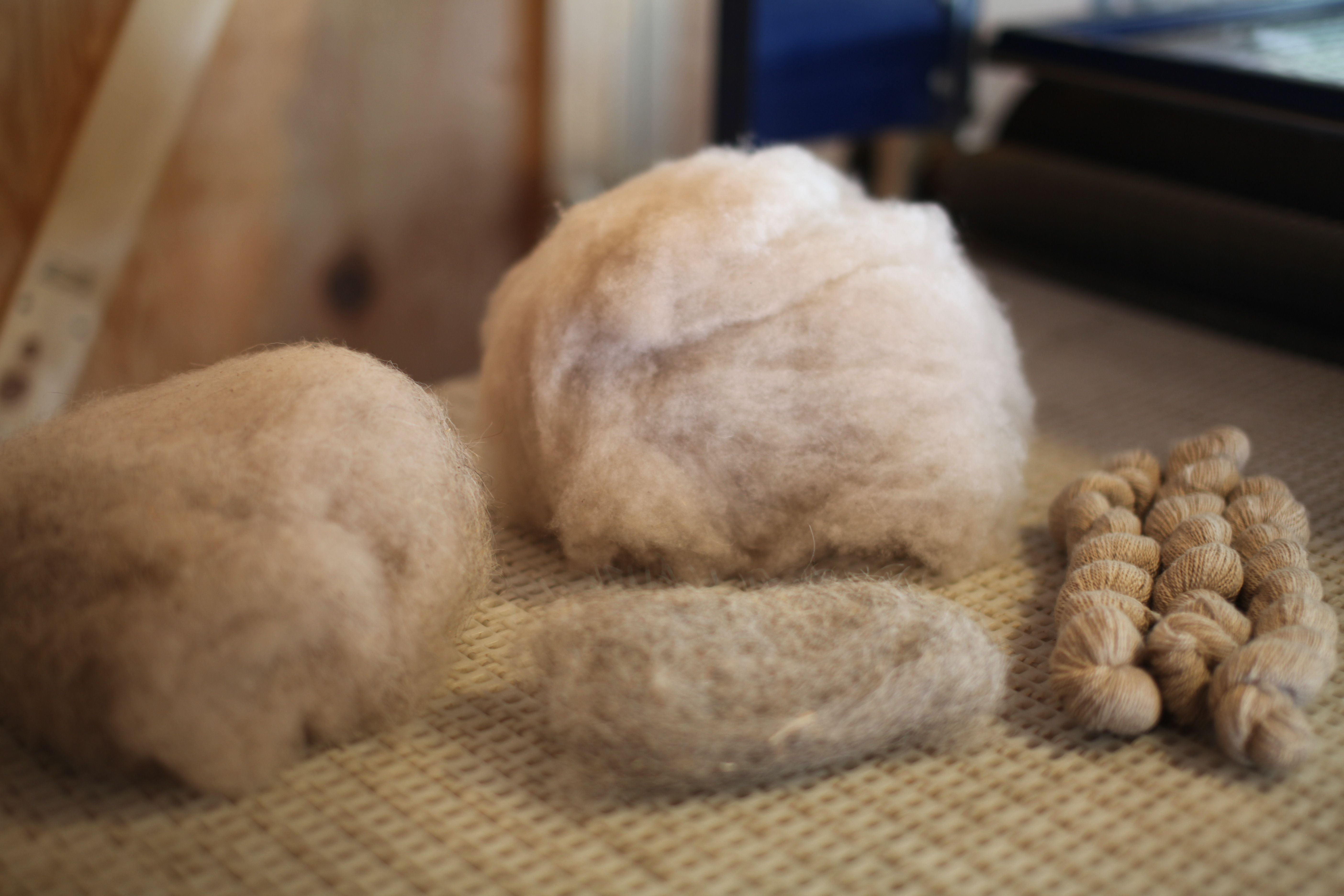 The de-hairing process, from left (incoming material) to right (spun fiber)